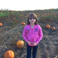Wasem Fruit Farm Pumpkin Patch