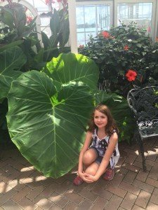 Vacation View: Weekend Trip to Grand Rapids
