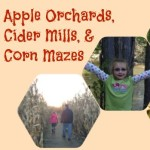 Apple Orchards, Cider Mills, and Corn Mazes Near Ann Arbor