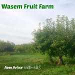 Wasem Fruit Farm Orchard View