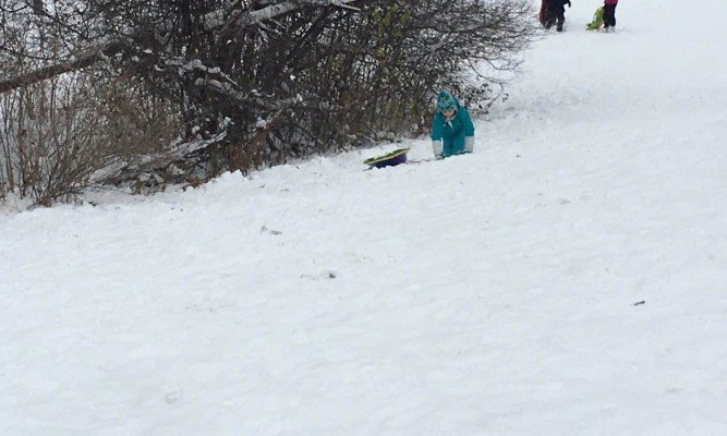 Crawling up the hill while Sledding at Veterans Memorial Park
