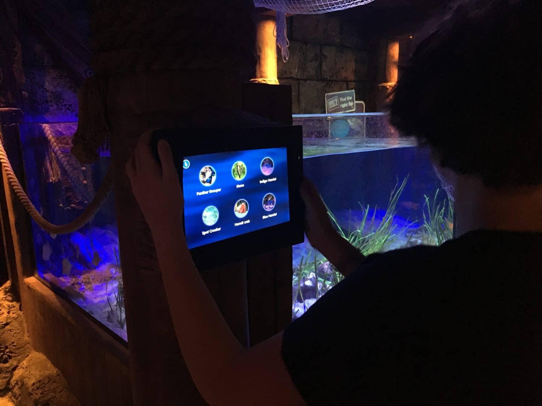 Sea Life Michigan Aquarium - Information Screens