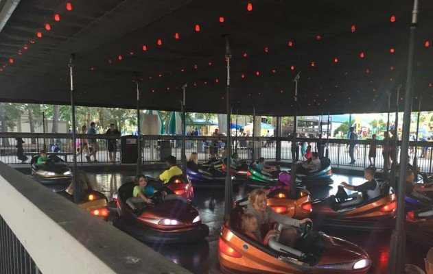 Cedar Point - Wednesday Activity Review - Bumper Cars
