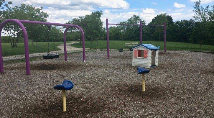 Leslie Park Playground Profile - Swings