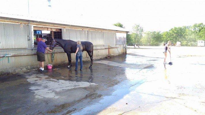 4-H Youth Show - Horse Bath