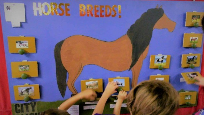 4-H Youth Show - Horse Poster