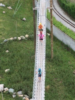 Toledo Zoo Aerial Adventure Course - On the Sky Bridge - View from Zip Line Tower