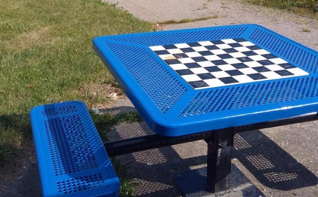 Arbor Oaks Playground Profile - Checkerboard table