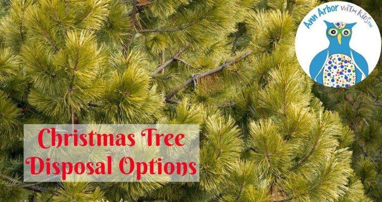 Ann Arbor Christmas Tree Disposal Options