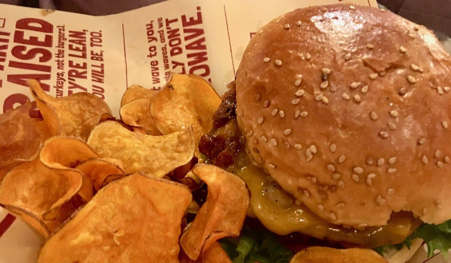 Bagger Dave's Review - Bacon BBQ Burger